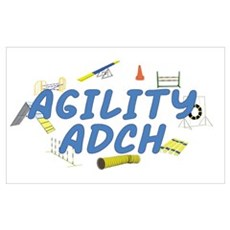 Agility ADCH Poster