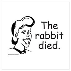 RABBIT DIED Poster