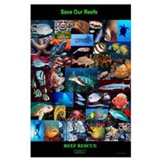 """Reef Rescue """"Limited Edition"""" Save Our Reef Poster"""