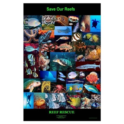 "Reef Rescue ""Limited Edition"" Save Our Reef Poster"