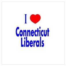 I Love Connecticut Liberals Poster