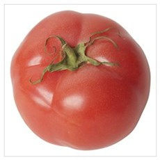 A Tomato On Your Canvas Art
