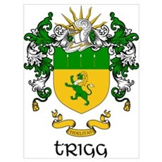 Trigg Coat of Arms Poster