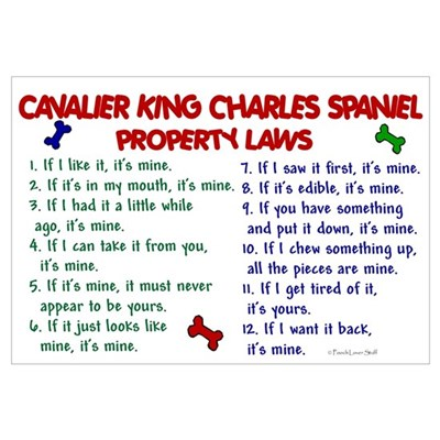 Cavalier King Charles Property Laws 2 Framed Print