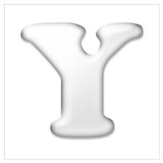 White Letter Y Poster