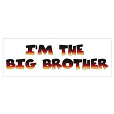 I'm the big brother Poster