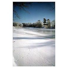 Frosty River Scene Poster