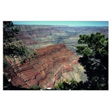 Grand Canyon Red Rock Poster