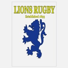 Lions Rugby White