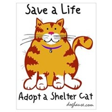 Shelter Cat Canvas Art
