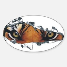 Tiger Eyes Decal