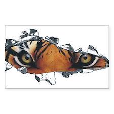 Tiger Eyes Decal