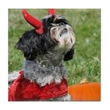 Halloween Shih Tzu Tile Coaster