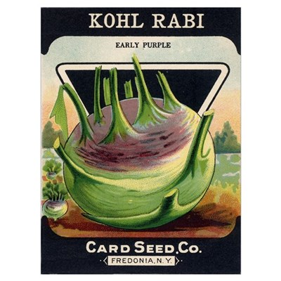 Kohl Rabi antique seed packet Canvas Art