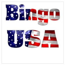 Bingo USA Framed Print