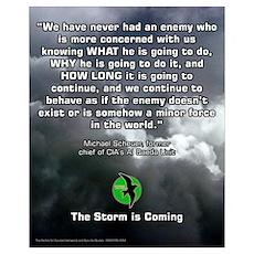 Storm Petrel 16x20 1 Poster