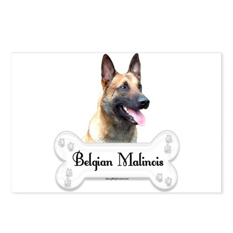 Malinois 2 Postcards (Package of 8)