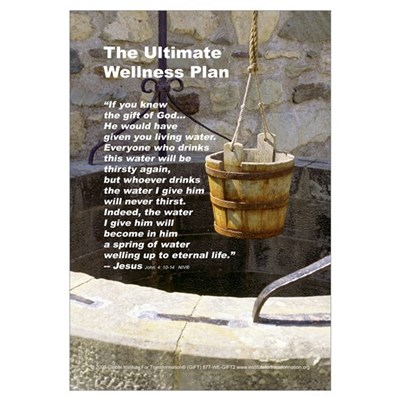 The Ultimate Wellness Plan Framed Print