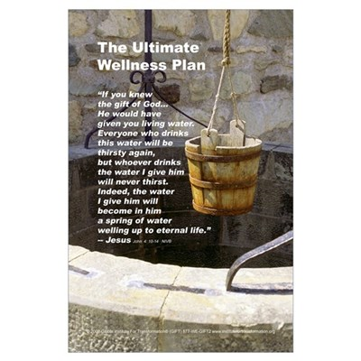 The Ultimate Wellness Plan Poster