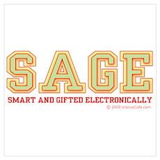 Sage: Computer Genius Poster