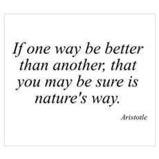 Aristotle quote 37 Poster