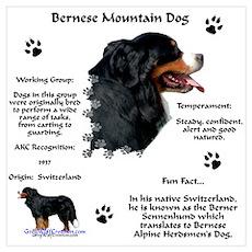Berner 1 Poster