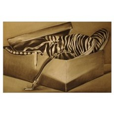 35x23 CHARCOAL DRAWING Poster