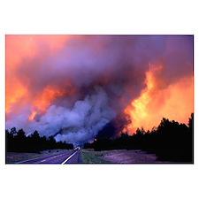 Wildland Fire Storm