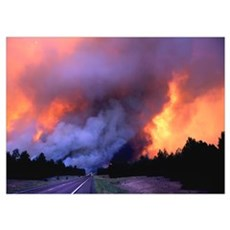 Wildland Fire Storm Poster