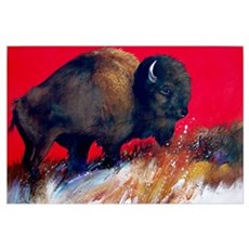 Bright Beautiful Buffalo in Red Canvas Art