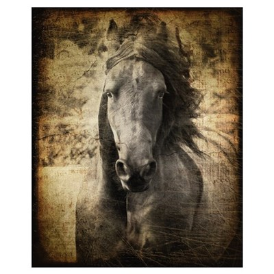 Friesian Framed Print