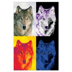 4 Wolf Faces Poster
