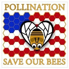 PolliNATION Save our Bees Canvas Art