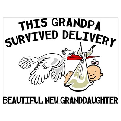 New Granddaughter Poster