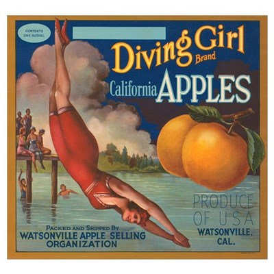 Diving Girl Poster