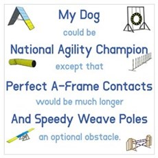 Agility Almost Brag Poster