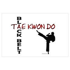 Tae Kwon Do Black Belt 2 Poster