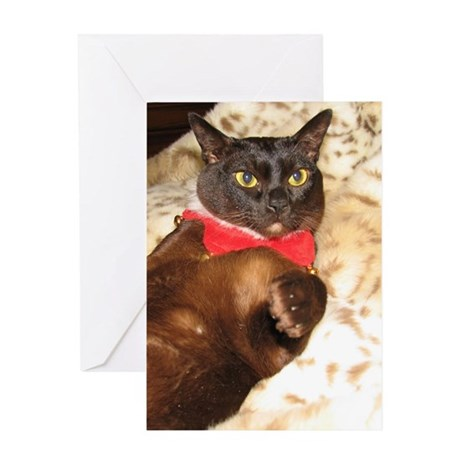 FPG Xmas Cat ITALIAN Greeting Card