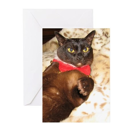 FPG Xmas Cat FRENCH Greeting Cards (Pk of 20)