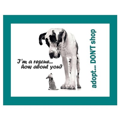 Adopt - DON'T Shop! Poster