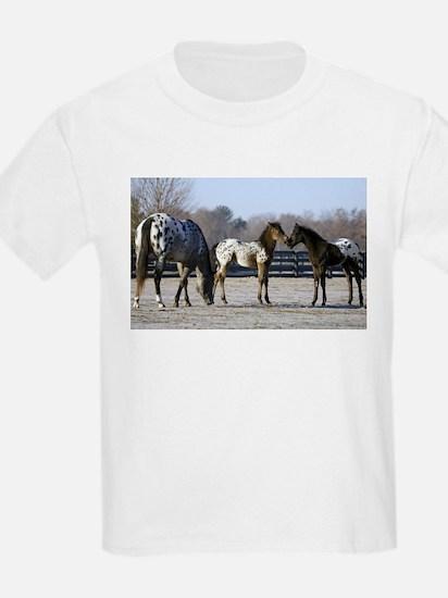 2006 foals Kids T-Shirt