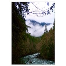 Misty Nooksack River