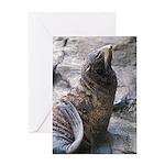 Proud Sea Lion Greeting Card