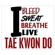 Bleed Sweat Breathe Tae Kwon Do Poster
