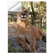 Cougar Wall Decal