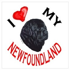 Newfoundland Love Poster