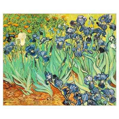 Irises Canvas Art