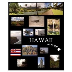 Hawaii Collage Poster