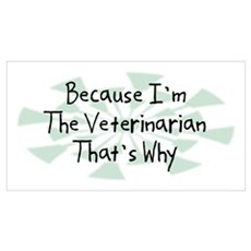 Because Veterinarian Framed Print