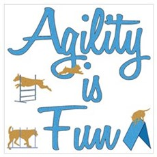 Agility is Fun Poster